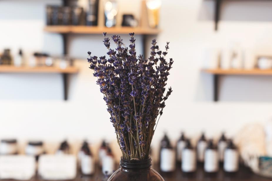 lavender-in-shop_925x